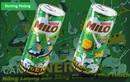 """Top 12 cuộc thi """"Milo Can Make It Yours"""" đã lộ diện: Toàn những gương mặt cá tính, tài cao!"""