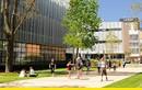 Học tập, việc làm, định cư tại Úc cùng Đại học New South Wales