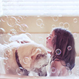 Bộ ảnh tuyệt đẹp về tình bạn gắn bó giữa bé gái và chó cưng