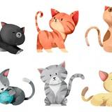 Chọn một chú mèo dễ thương để khám phá tính cách con người bạn