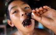 """Ẩm thực lạ ở Campuchia: Món nhện độc ai nhìn cũng khiếp vía nhưng vẫn """"ùn ùn"""" người ăn"""