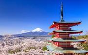 Top 3 địa điểm các tín đồ yêu da không thể bỏ lỡ khi đến Nhật