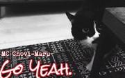 """Ngôi sao Internet ở Nhật Bản hóa ra là một """"boss"""" mèo biết đọc rap, được phối nhạc remix hẳn hoi"""