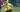 """HLV Park Hang-seo: """"Lão nông"""" và quả ngọt nảy mầm trên vùng trũng của bóng đá thế giới"""