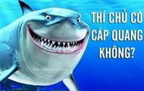 Dưới biển thì có cá mập cắn cáp quang, mặt đất lại có siêu chuột