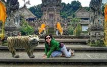Loạt ảnh chế bức tượng hổ mặt ngáo không cười sặc nước bọt, không tính tiền