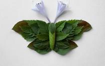 Khoác lên mình lớp áo hoa cỏ rực rỡ, côn trùng bỗng trở nên đẹp và sang hơn bao giờ hết