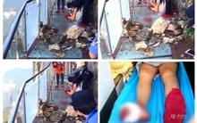 Đang tham quan cầu kính cao nhất thế giới, nữ du khách gặp tai nạn đá rơi liểng xiểng