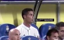 """Cay cú vì bị thay khỏi sân, Ronaldo chửi Zidane là """"thằng chó đẻ""""?"""