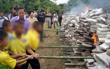 Thái Lan: Điều động học sinh đi đốt 8 tấn cần sa