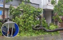 Hà Nội: Một người chết, 5 người bị thương do bão số 1