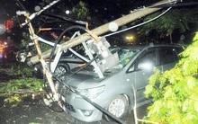 Các tài xế hoảng hồn kể lại khoảnh khắc cây đổ kéo theo trụ điện đè bẹp 7 ô tô ở Sài Gòn
