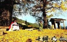 Rời xa chốn đô thị phồn hoa, cặp vợ chồng trẻ lên núi ẩn cư, sống như trong phim kiếm hiệp