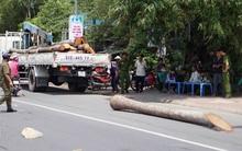Xe cẩu bất cẩn làm rơi thân cây dừa đè chết nam sinh 15 tuổi