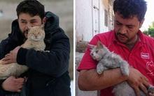 Chùm ảnh về tình người và động vật sẽ sưởi ấm những trái tim lạnh giá trong ngày cuối năm