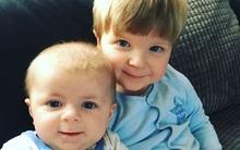 Bị chó dữ tấn công, bé trai 4 tháng tuổi thiệt mạng, mẹ và anh trai 22 tháng tuổi nguy kịch