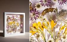 """Cách làm tranh hoa khô cực """"ảo diệu"""" theo phong cách 3D"""