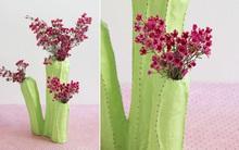 Hô biến lõi giấy thành lọ hoa xương rồng đầy nghệ thuật