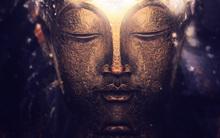 Nếu cuộc sống bế tắc, hãy chọn một bức ảnh để nhận được lời dạy từ Đức Phật