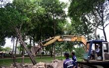 Sài Gòn bứng 75 cây xanh để xây dựng ga metro Bến Thành
