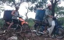Hà Nội: Xác minh người đàn ông chạy xe máy chở cá chết từ hồ Linh Đàm đi đâu