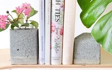 Bạn yêu hoa, thích đọc sách thì đừng bỏ lỡ bài này!