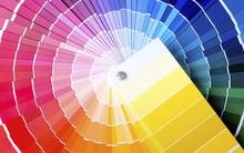 Màu sắc yêu thích tiết lộ bản chất thật sự của con người