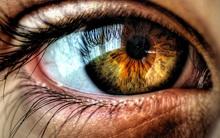 Đôi mắt của bạn rất tuyệt vời, bạn đã biết chưa?