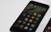 iPhone 7 chính hãng Việt Nam dự kiến 18,79 triệu, muốn mua sớm đặt máy xách tay từ hôm nay