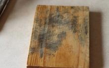 Thực hư hiểm họa ung thư gan đến từ thớt, đũa gỗ bị mốc