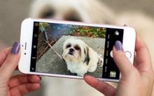 Chẳng cần tải về bất kì ứng dụng nào cho iPhone, bạn vẫn có thể chỉnh ảnh tuyệt đẹp