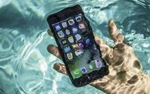 Làm gì khi iPhone 7 bị vào nước?