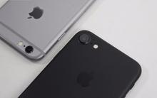 iPhone 7 chụp ảnh đẹp là thế, nhưng hóa ra cả cụm camera chỉ có giá hơn 500 nghìn