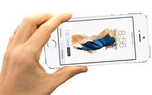 iPhone 5se có thể sẽ chỉ ra mắt lặng lẽ