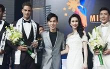 Cuộc thi nam vương mà Hoa hậu Thu Vũ làm giám khảo có quy mô như thế nào?
