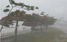 Tin khẩn về đường đi của bão số 1, Hà Nội có gió giật đến cấp 7-8
