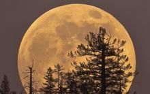 Siêu trăng lớn nhất thế kỷ sẽ xuất hiện vào ngày 14/11, và Việt Nam xem được nhé!