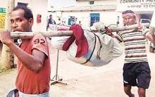 Ấn Độ: Nhóm người gây phẫn nộ vì giẫm gãy xương xác cụ bà 80 tuổi để dễ vận chuyển