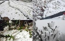 Nhiệt độ miền Bắc xuống thấp, băng tuyết bao phủ trên diện rộng