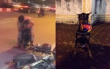 """Chủ chú chó Doberman bị đâm: """"May mắn chó của tôi qua khỏi rồi, còn kẻ đã đâm nó thì tôi không muốn gặp"""""""