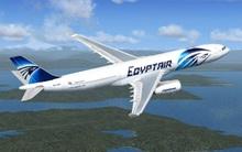 """""""Rất có khả năng"""" máy bay Ai Cập rơi vì hành động khủng bố"""