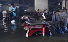 Hàng trăm xe máy sinh viên ĐH Quốc gia TP.HCM còn chìm trong nước