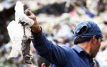 Indonesia: Bắt một con chuột, nhận gần 2 USD