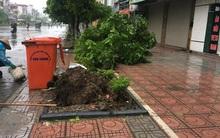 """Bão số 1 """"quét"""" qua Hà Nội - Cảnh báo nguy cơ ngập úng trên nhiều tuyến phố"""