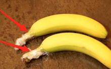 Hóa ra chúng ta đang bảo quản hoa quả sai cách từ trước đến nay