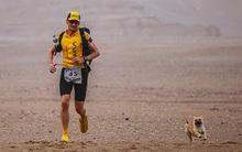 Cùng nhau vượt qua 124km chạy bộ trên sa mạc, cô chó đi lạc đã tìm được chủ mới cho mình
