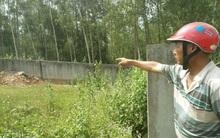 Ra nghĩa trang đốt vàng mã, gia đình 14 người bị đàn ong rừng tấn công