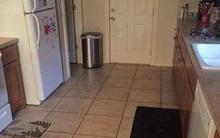 Rõ ràng có chú chó nấp trong căn bếp nhưng người ta không tài nào tìm ra nổi
