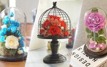 Hoa hồng vĩnh cửu - Món quà từ nghệ thuật ướp hoa tươi của xứ sở hoa anh đào