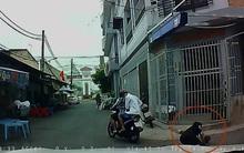 Clip: Bị cướp giật sợi dây chuyền trên cổ, người phụ nữ ngã nhào xuống đường